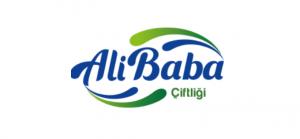 Whatsapp crm - referans alibaba